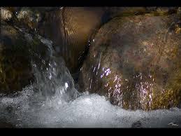 Rock water flower